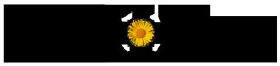 logo_doronico_bnew