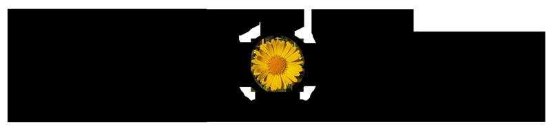 logo_doronico_rnew